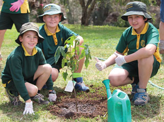Children planting a tree in Yarraman